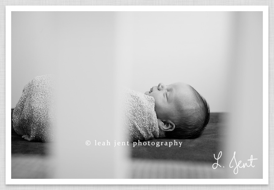 dayton lifestyle newborn session