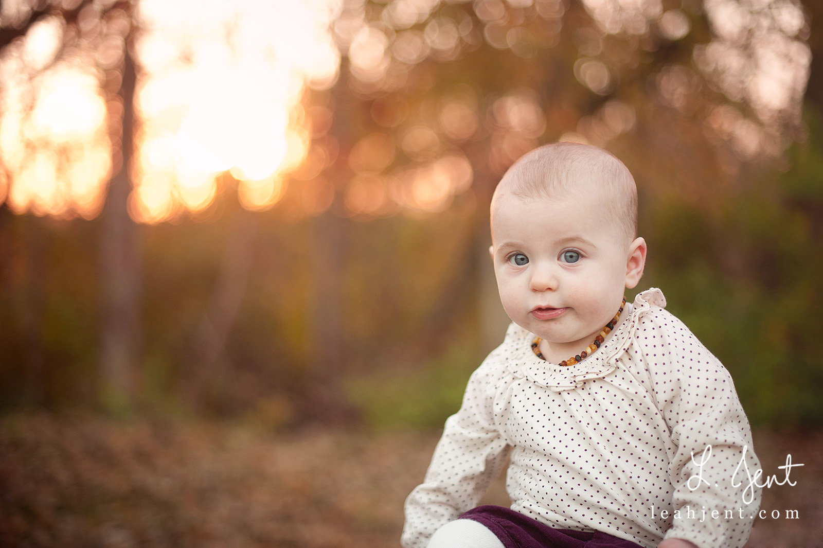 columbus ohio baby photography