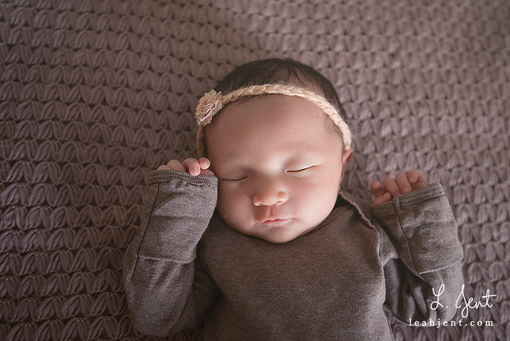 dayton newborn session